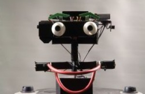 erwin-robot